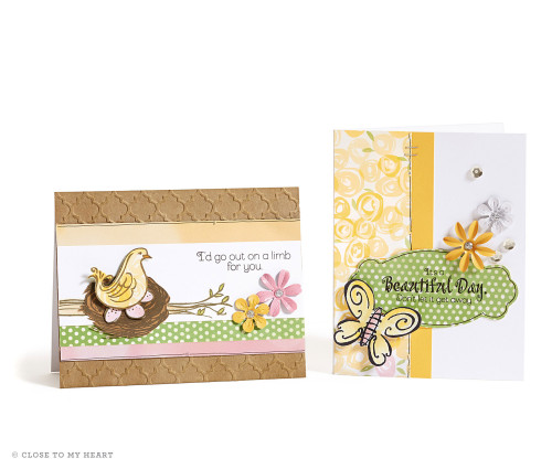 14-ai-beautiful-day-out-on-a-limb-cards
