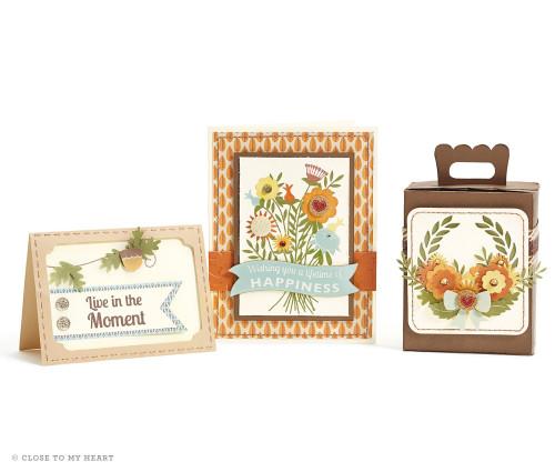 14-ai-lifetime-of-happines-cards-cricut-box