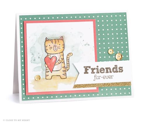 15-ai-friends-fur-ever-card